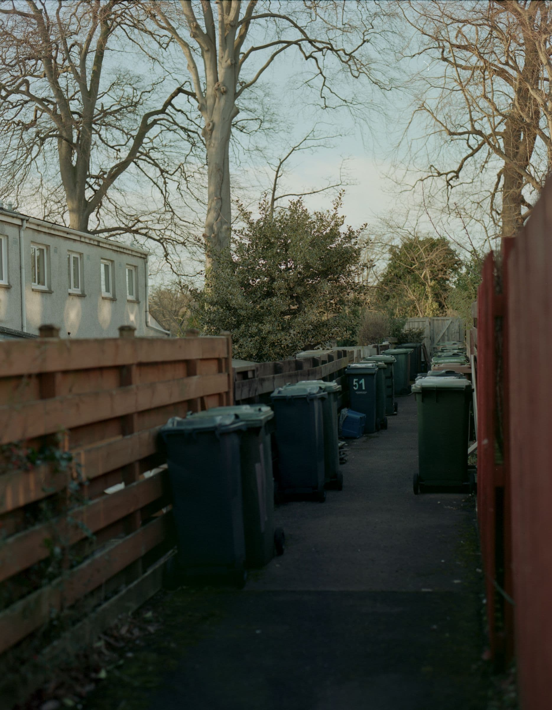 Wheelie bins crowded in a suburban alleyway at last light